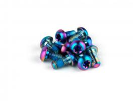 Sram Kit Tornillos Disco Rainbow (12 Uds)