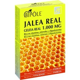 Intersa Bipole Jalea Real 20 Ampollas 1000 Mg