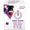 WUG After Drink Chicle Vital 24 cajas x 6 uds